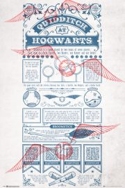 Harry Potter Quidditch At Hogwarts - plakat