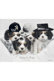 Pieski - Keith Kimberlin - gangsta pups - plakat