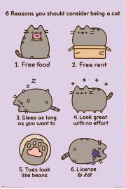 Pusheen Reasons to be a Cat - plakat