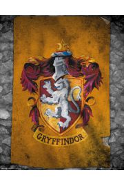 Harry Potter Gryffindor - plakat