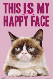 Grumpy Cat Happy face - plakat