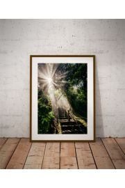 God light - plakat premium