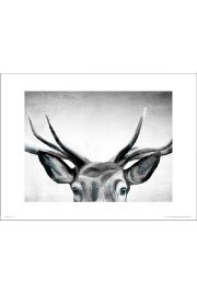 Deer Eyes - plakat premium