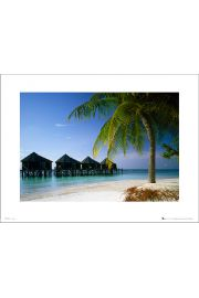 Tom Mackie Beach - art print