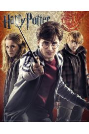 Harry Potter 7 Trio - plakat