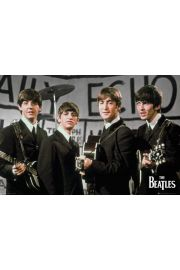 The Beatles Daily Echo - plakat