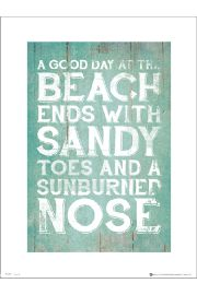 Sandy Toes Sunburned Nose - plakat premium