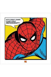 Spider-man With Great Power - reprodukcja