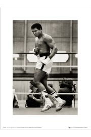 Muhammad Ali Float - art print