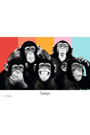 The Chimp Compilation - plakat