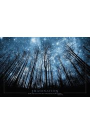 Wyobraźnia - Keep your eyes ON the stars AND your feet ON the ground - plakat motywacyjny
