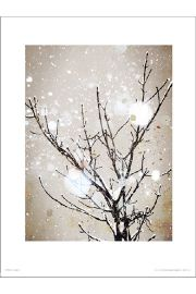 Christmas Icy Branches - art print