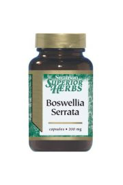 Boswellia Serrata extract 200mg 120 kaps.