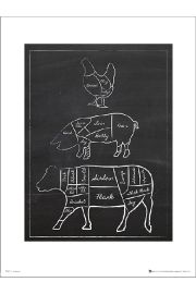 Butchers Cuts Chalk Portrait - plakat premium