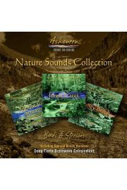 "Zestaw 3 części ""Nature Sounds Collection: Birds & Streams"""