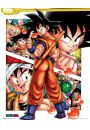 Dragon Ball Kola� - plakat - Seriale