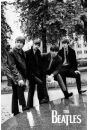 The Beatles - zdj�cie w Parku - plakat - Beatles