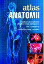 eBook Atlas anatomii pdf