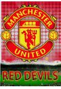 Manchester United Glory - plakat 3D