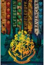 Harry Potter Domy Magii - plakat