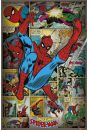 Marvel Comics - Spiderman Retro - plakat - Animowane